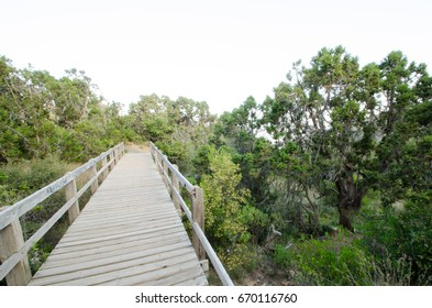 """The beautiful and amazing countryside in Abha city south area of Saudi Arabia """"Alsouda Highland"""" Wooden bridge"""