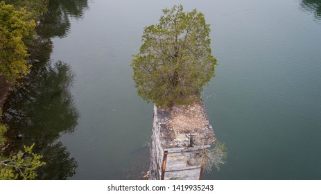 Beautiful Amazing Scenic Aerial View Unusual Tall Green Tree Growing on Aged Abandoned Dilapidated Brick Stone Concrete Ruin Remains of Vintage Railroad Bridge on the Historic Potomac River.