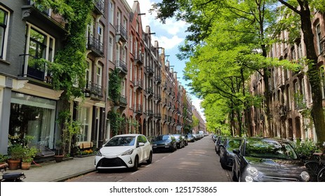 Beautiful Amsterdam street in summer with colorful houses in classic holland architecture style, bright green trees and cars on both sides, vintage porches and windows, blue sky in the background