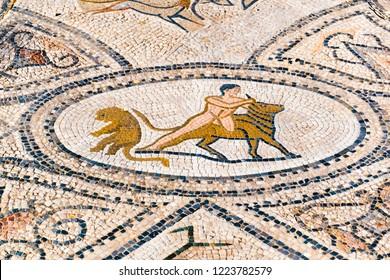 Beautiful Ancient Mosaic in Roman ruins of Volubilis, Unesco, Meknes, Morocco, Africa