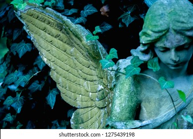 Beautiful angel stone statue with a sweet expression that looks down. Fokus on the wings of angel.