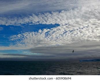 Beautiful Antarctic Skies