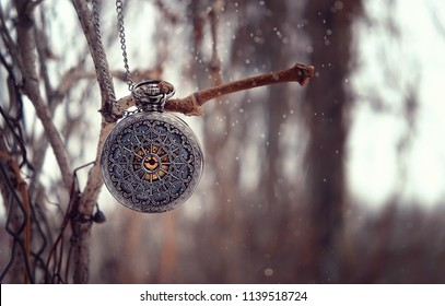 beautiful antique locket on branch with bokeh background in vintage style.  selective soft focus, toning.