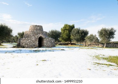 Beautiful Apulian landscape after snowfall, trullo and olive trees in an olive grove in the snow, unusual cold winter in Salento, Avetrana, Italy