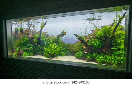 Aquascape High Res Stock Images Shutterstock