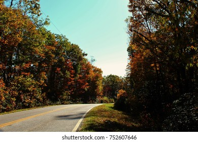 The beautiful array of fall colors.