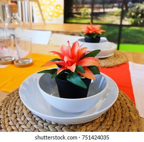 Beautiful Artificial Plant with Orange Flower in Flowerpot for Home and Building Decoration.