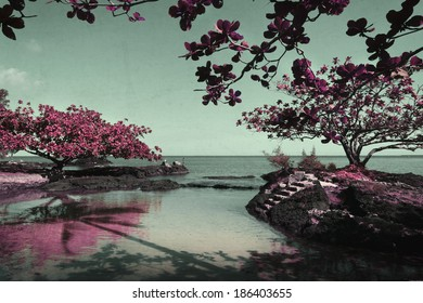Beautiful artistic nature scene with pink trees