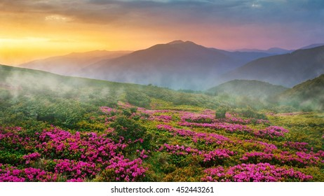 beautiful Asia sunrise landscape in the mountains, east  Asia, north Thailand, around world