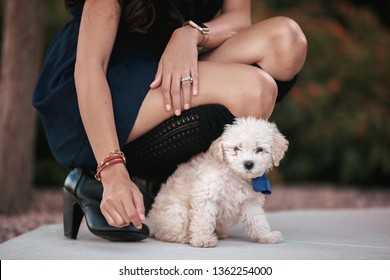 beautiful asian filipina girl wearing a dress and boots kneeling down next to a cute cream colored maltipoo puppy with a blue bow on her