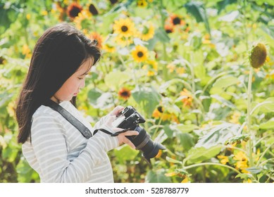 Beautiful Asian girl taking pictures on the sunflowers field