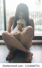 Beautiful Asian owner woman sit near windows and hug and kiss cute Brown Exotic shorthair cat in condo living room during sunset. Happy tan girl playing with adorable pet.