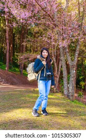 beautiful Asian woman in the park with pink cherry blossom flowers background, travel theme portrait
