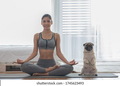Beautiful Asian woman practice yoga lotus pose with dog pug breed enjoy and relax with yoga at home,Recreation Exercise with Dog ,Wellness woman breathing and meditation with yoga and dog small pet