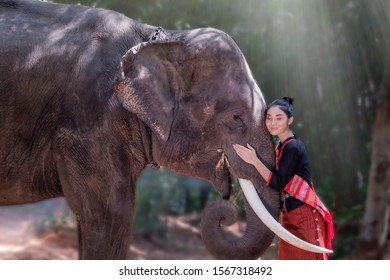 Beautiful Asian woman in traditional costume standing and hugging the big elephant, in jungle scenery, countryside of Thailand