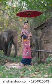 Schöne asiatische Frau trägt thailändisches Kleid mit ihrem Elefanten