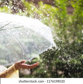 Beautiful asian young woman playing out in the rainy ,stand in garden rise hand touch falling rain, feel happy and have a warmth. running in tropical storm.