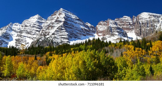 Beautiful aspen tree grove of gold with Colorado Rocky Mountains in the Maroon Bells Wilderness