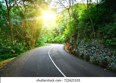 Beautiful asphalt road in palm jungle. Sunset on Seychelles.