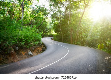 Beautiful asphalt road in palm jungle. Sunset on Seychelles.