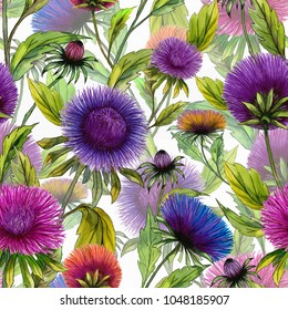 Beautiful aster flowers in different bright colors with green leaves on white background. Seamless floral summer pattern. Watercolor painting. Hand drawn illustration. Design for fabric or wallpaper.