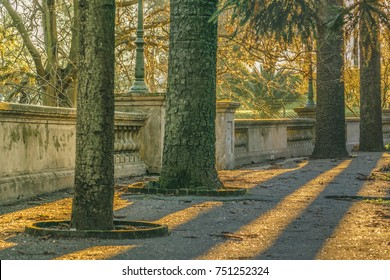 Beautiful autumn afternoon scene at park in Montevideo city, Uruguay
