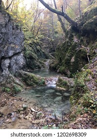 Beautiful autumn, brook, nature