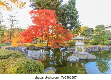 Beautiful autumn color trees  of Ueda  Park in Nagano Prefecture, Japan.