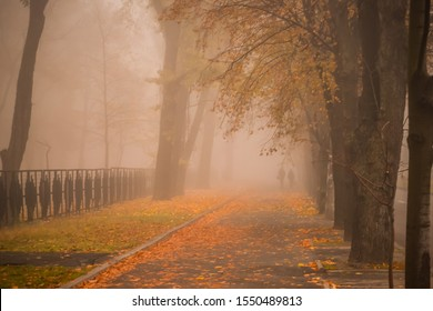 Beautiful autumn concept. A long avenue in the autumn park with many yellow leaves. Morning fog fell on a city street. A passers-by is walking along a deserted sidewalk in a fog.