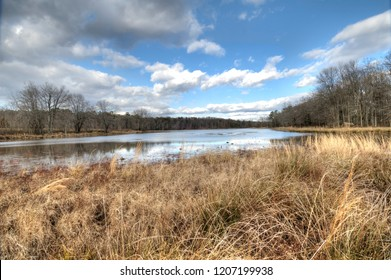 A beautiful autumn display of the marshy wetlands of Cash Lake at the Patuxent Research Refuge in Bowie, Maryland.  Dormant, brown tall grasses give way to quiet waters and majestic blue cloud skies.