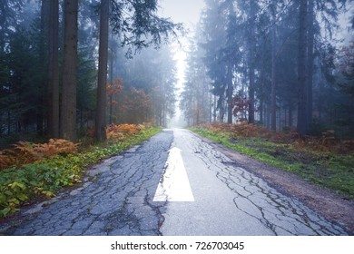Beautiful autumn foggy forest road with straight arrow direction sign on the cracked and damaged asphalt floor.