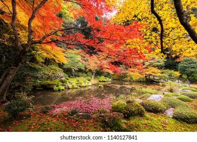 Beautiful autumn foliage botanic garden with pond at Nanzen-ji Temple, Kyoto, Japan.