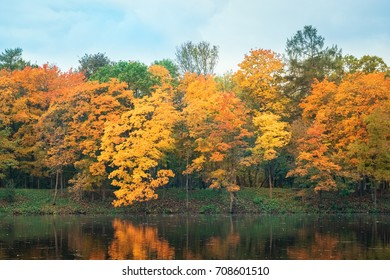 Beautiful autumn forest landscape near lake and idyllic trees reflection. Yellow, orange and golden autumn foliage of woods trees. Outdoor autumn park landscape at a fall, orange autumn tranquility