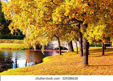Beautiful autumn forest in park 'Catherine Palace' Pushkin, Saint Petersburg, Russia