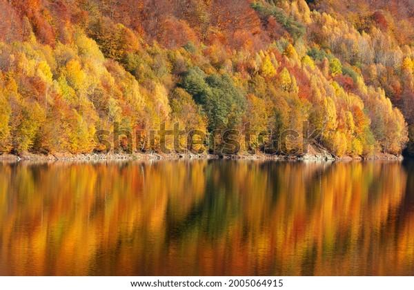 beautiful-autumn-forest-reflecting-lake-