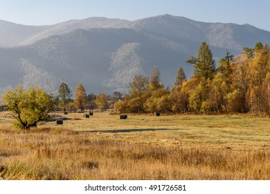 Beautiful autumn golden landscape with haystacks on the field and trees on the background of mountains and blue sky