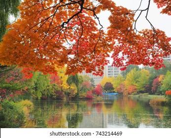 beautiful autumn and lake view
