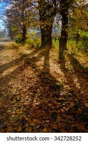 Beautiful autumn landscape, Armenia
