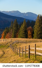 Beautiful autumn landscape with colorful trees in Carpathian mountains, Ukraine. Red, yellow and green fall leaves