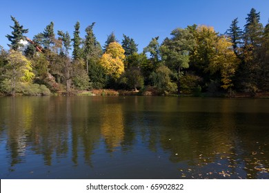beautiful autumn landscape with colorful trees and a pond