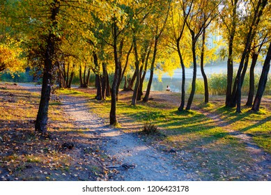 Beautiful autumn landscape. Golden colores of Indian Summer. Warm and sunny October day,