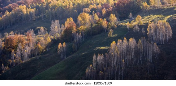 Beautiful autumn landscape in the mountains, Romania.
