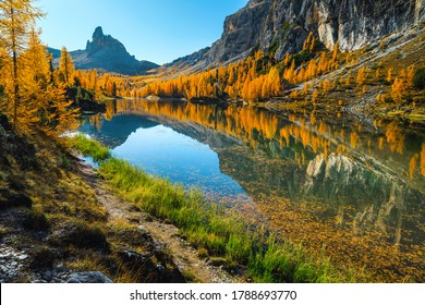 Beautiful autumn landscape with spectacular mountain lake and colorful yellow larches in the Dolomites, lake Federa, Italy, Europe