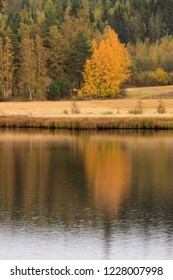 Beautiful autumn landscape and water reflection