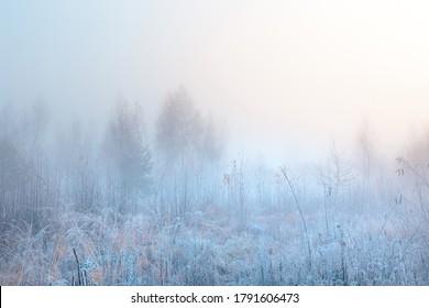 Schöne Herbstlandschaft mit scheußlichen Sonnenaufgängen. November nebligen Morgen und Heilfrost auf der malerischen Graswiese.