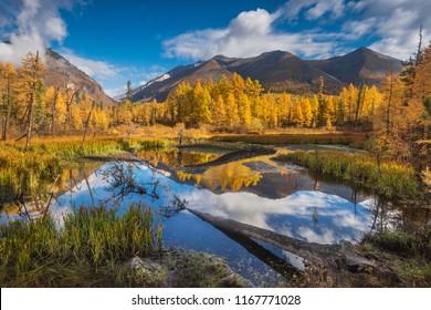 Beautiful autumn mountain scenery, Sibera, Russia