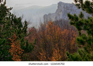 Beautiful autumn natural landscape in Crimea. Trees and mountains in the distance