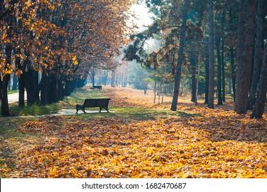 Hermoso parque otoñal. Hermoso paisaje otoñal. El banco del parque.