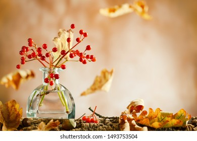 Beautiful autumn red berries and oak leaves in glass bottle on wood  at bokeh background, front view. Autumn still life with berries and leaves.