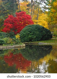 Beautiful autumn scene around a pond